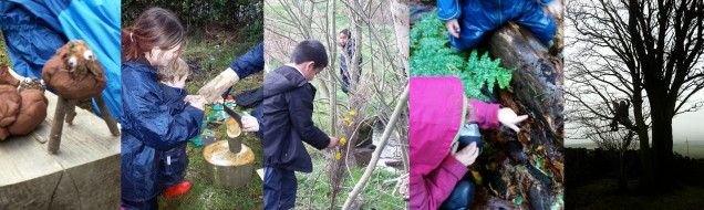 forest school website